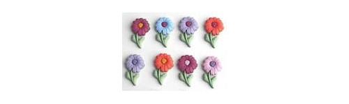 Fleurs boutons